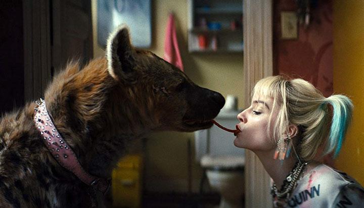 La siguiente película de Harley Quinn resolvería el misterio de la muerte de Robin