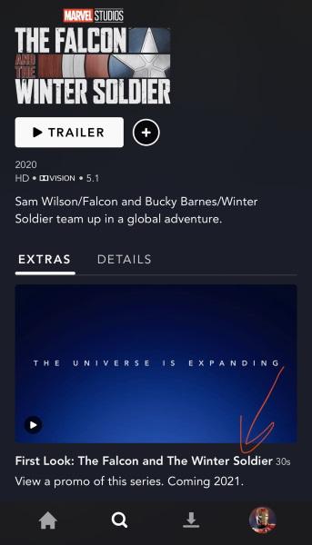 The Falcon and the Winter Soldier se estrenará hasta 2021