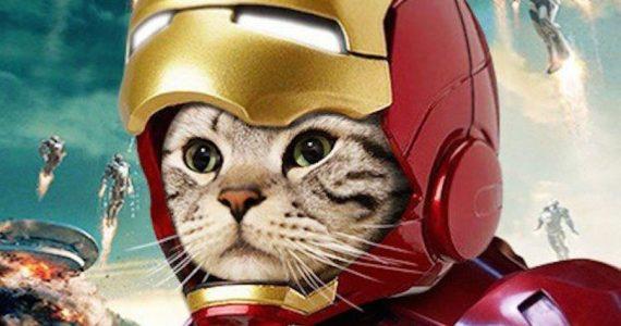 Iron Cat no existe… hasta ahora que hay un casco de Iron Man para gatos